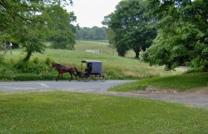 Amish neighbors going to church photo by Shirley Sanservino