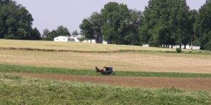 Amish buggy going to same welding shop my husband and I were going.