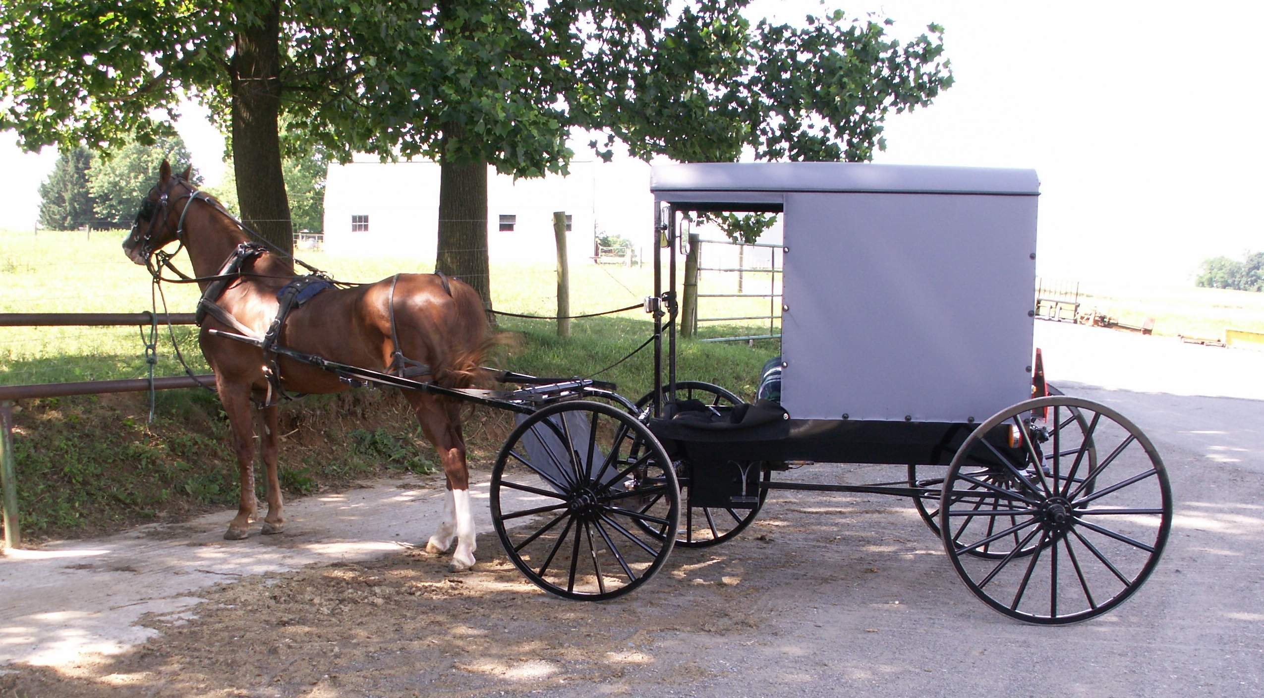 amish-country-009.jpg